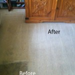 Bedroom-Carpet-Cleaning-Newark