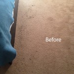 Bedroom-Carpet-Cleaning-Newark-A