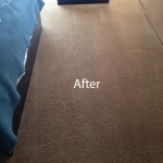 Bedroom-Carpet-Cleaning-Newark-B