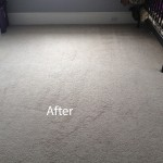 Bedroom-Wall-to-Wall-Carpet-Cleaning-Newark-B