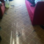 Newark-Carpet-Clean-before