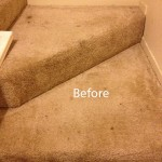 Stairs-Carpet-Cleaning-Newark-A